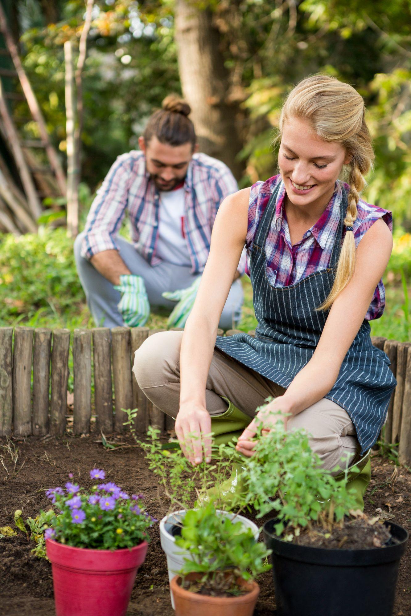 happy-female-gardener-plant-at-garden-6YJNQUT