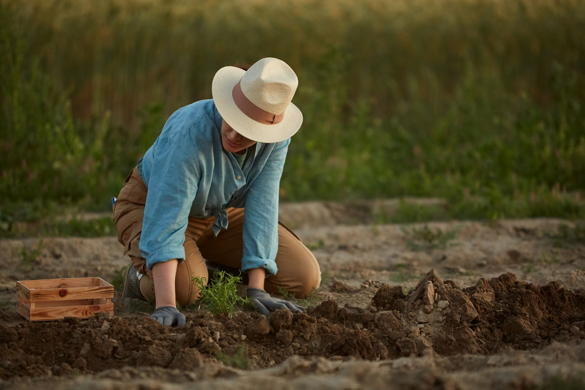 woman-working-in-field-QXFWLG9