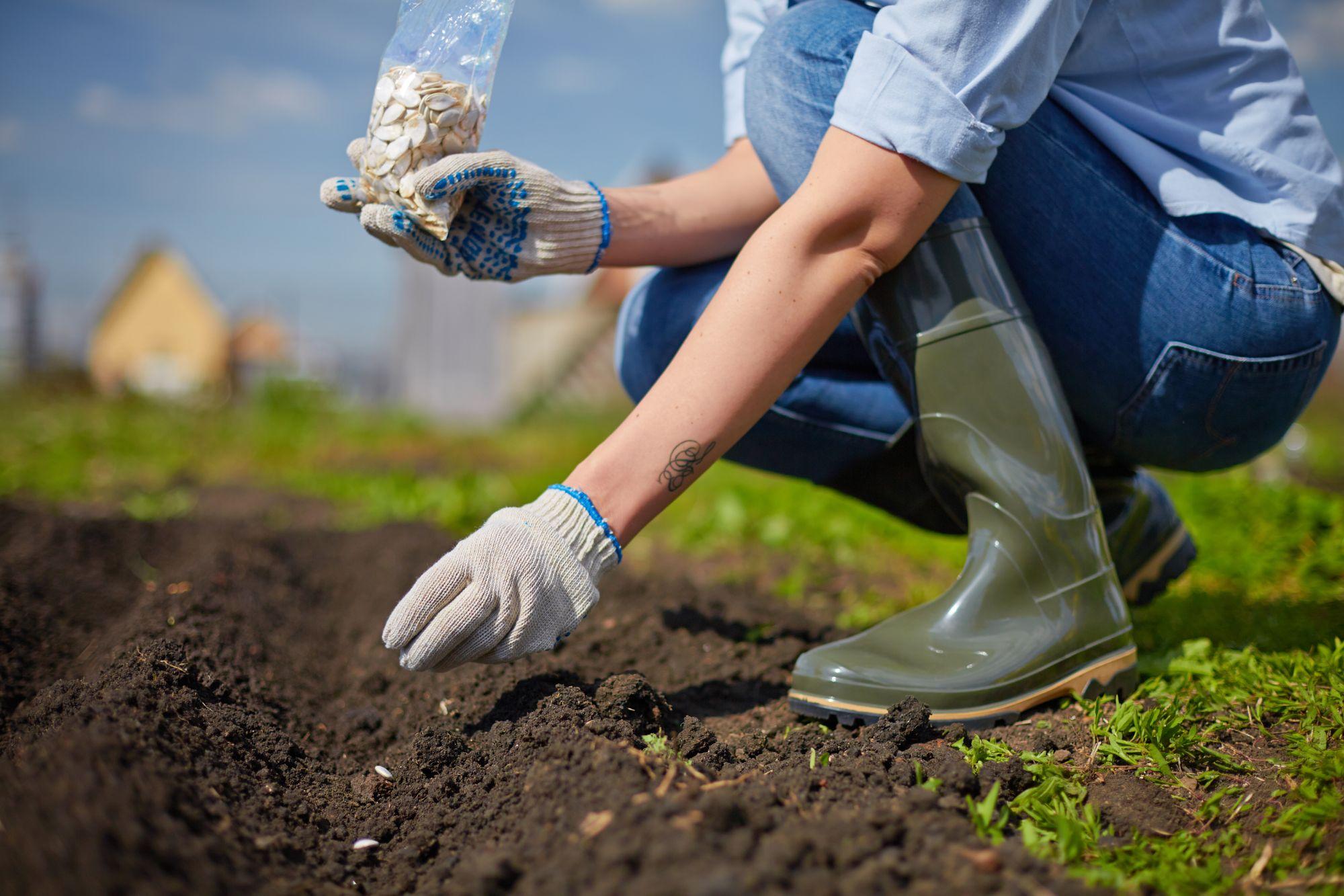 work-in-the-garden-PJZ4CHC